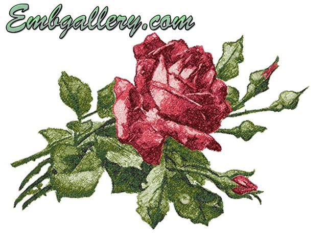 Free designs machine embroidery