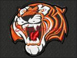 """Amur tiger""_K575"