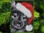 """Santa Mouse"""