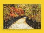 Autumn Park (free)